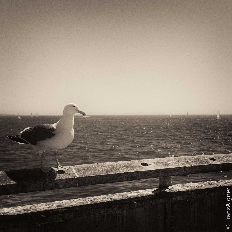 06Apr2014_0068_port