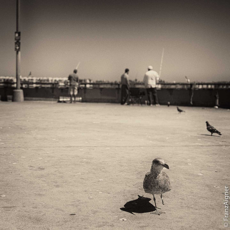 06Apr2014_0083_port