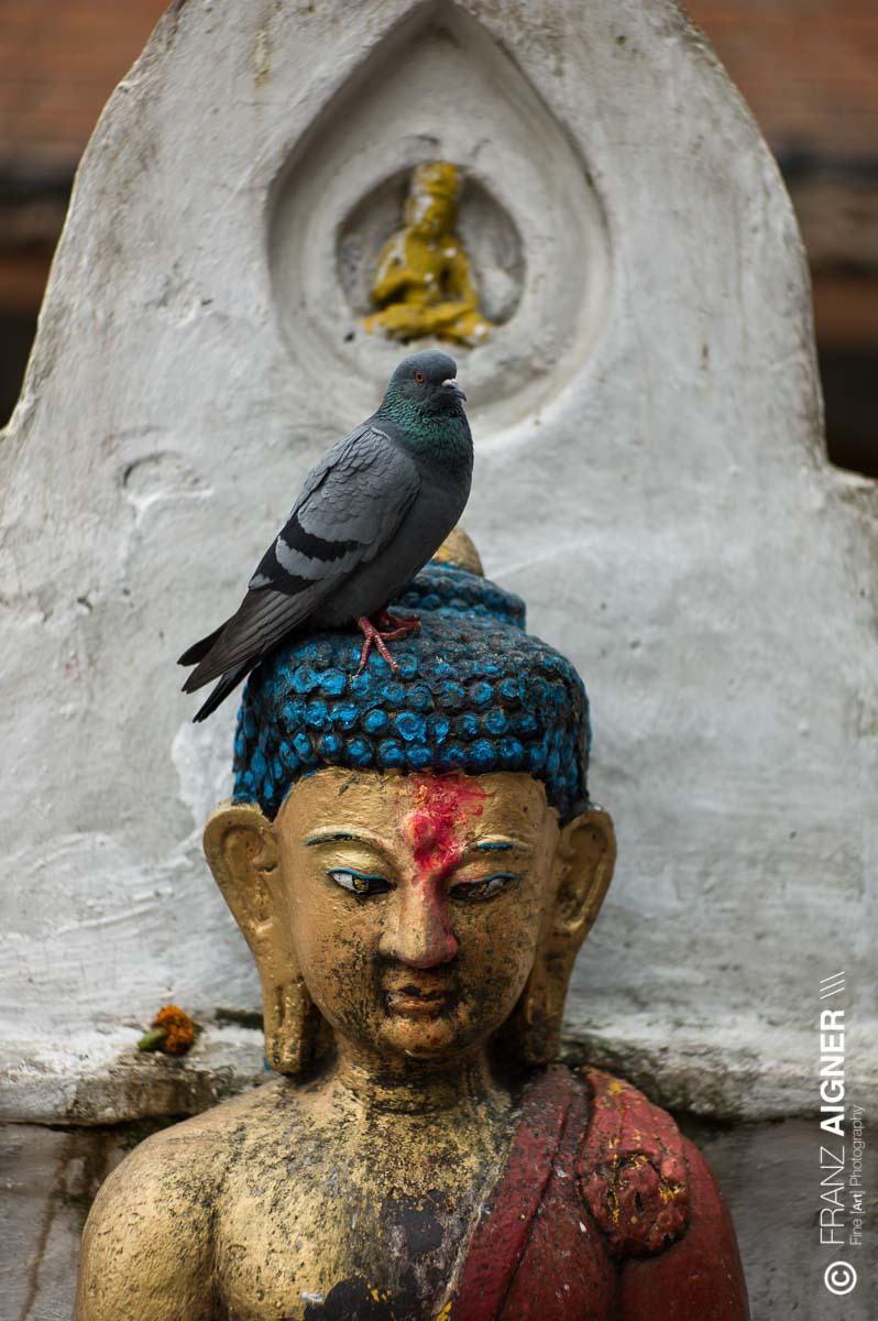FA_Nepal_Kathmandu_15Okt2013_0140